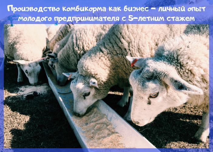 комбикорм овца корм